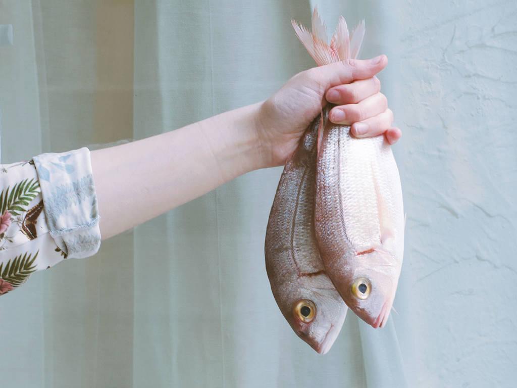 如何买到最新鲜的鱼