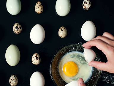 An Ode to the Almighty Egg