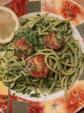 Spaghetti mit Spinat-Frischkäse-Soße