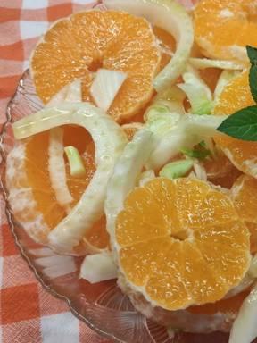 Fruchtiger Orangen Fenchelsalat