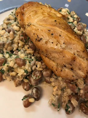 Chicken with borlotti beans, mushrooms & 5 grains