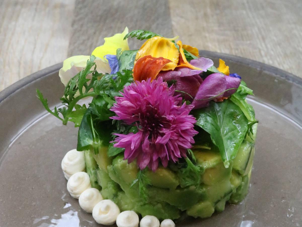 Avocado-Gurkentatar mit Wildkräutersalat