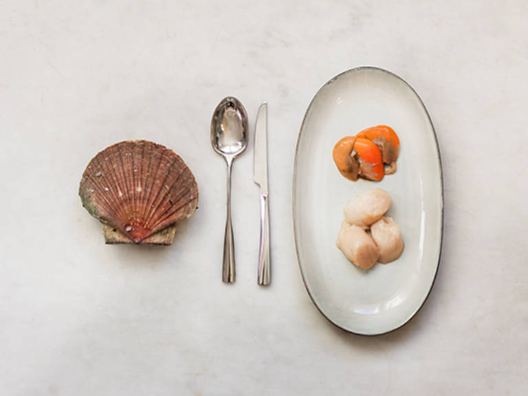 How to open scallops easily