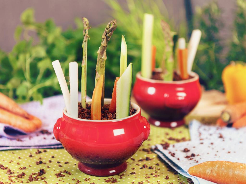 花盆中的蔬菜条配可食的花土