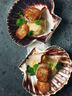Pan-fried scallops over puréed sunchokes