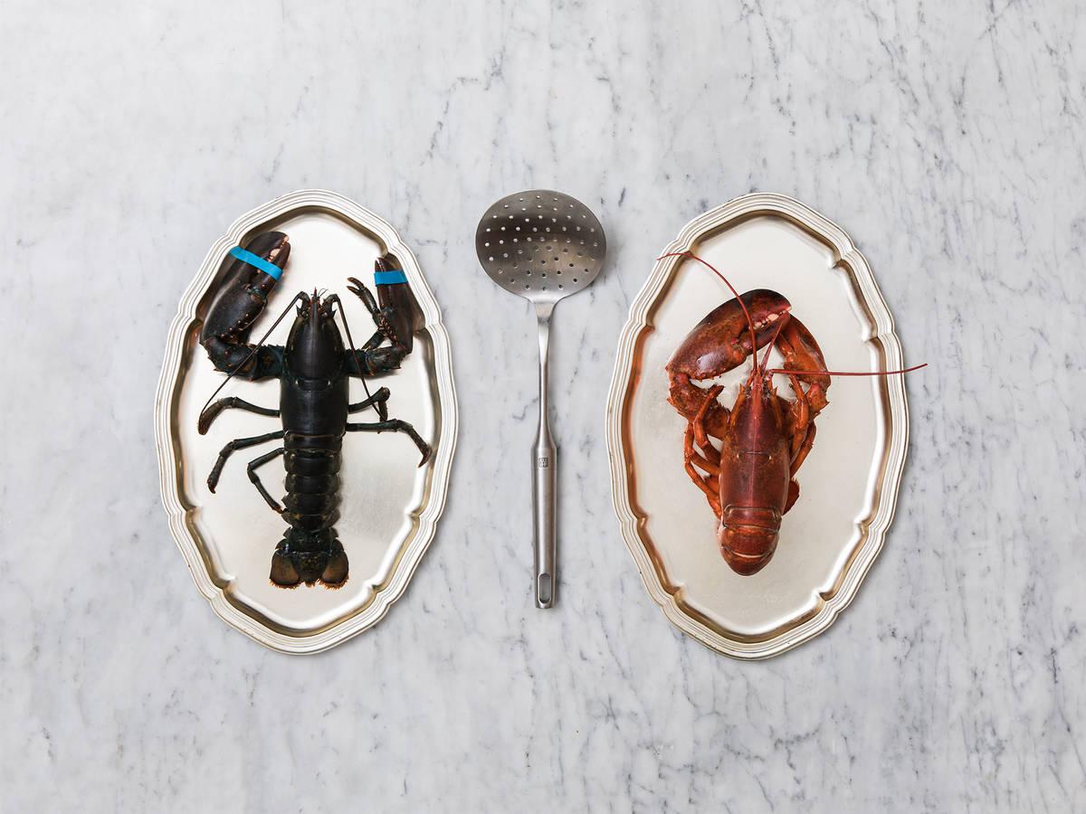 如何煮龙虾