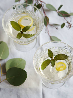 Elderflower-Champagne jello cocktail