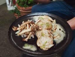 Gebackene saure Knödel mit Austernpilzen, Topinambur und Fenchel-Zwiebel-Salat