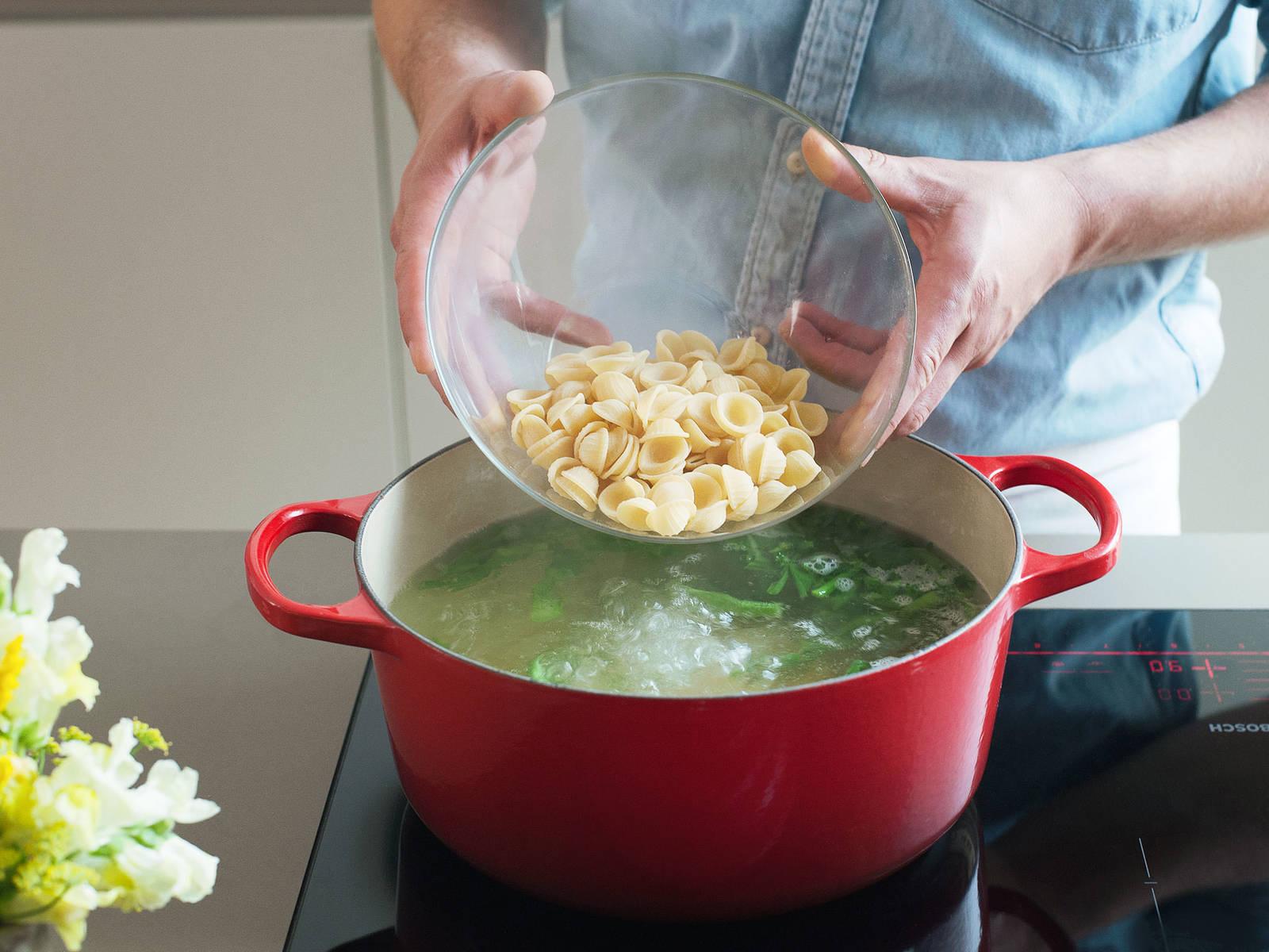 根据包装上的说明,将猫耳朵意面煮上8-10分钟,至煮出弹牙嚼劲。在煮面的最后两分钟时,加入西兰花茎。然后滤干意面和西兰花,置于一旁备用。