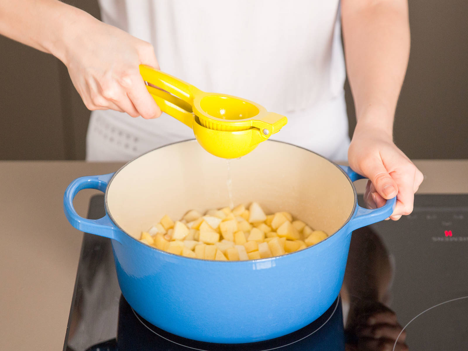 Bring fruit pieces, gelling sugar, tarragon, and a pinch of salt to a boil. Deglaze with lemon juice and allow to reduce, according to the gelling sugar's package instructions.