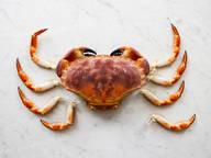 迫不及待想吃蟹