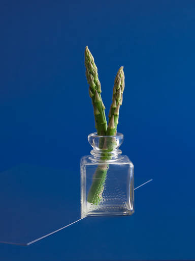 (Almost) Everything to Know about Asparagus