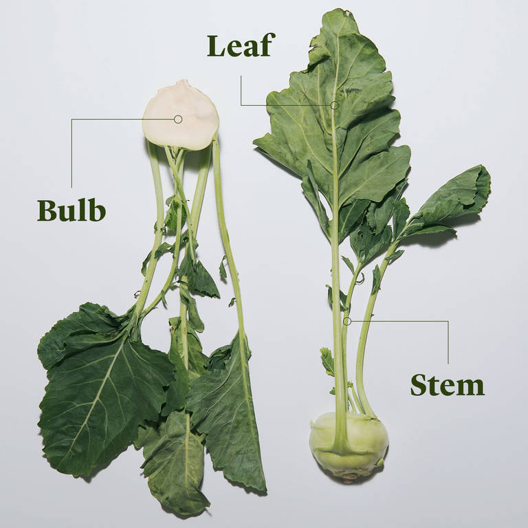 Everything To Know About Cooking And Shopping For In Season Kohlrabi Stories Kitchen Stories