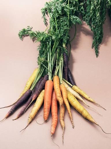4 Dinge, die du über Karotten wissen solltest
