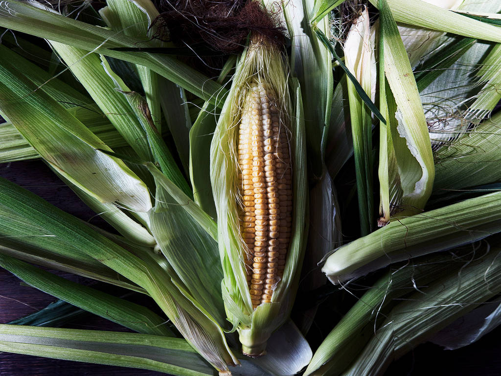 5 Recipes to Celebrate the Almighty Maize