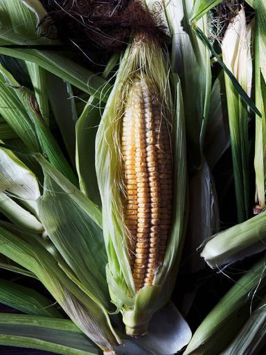 全能玉米的5款食谱