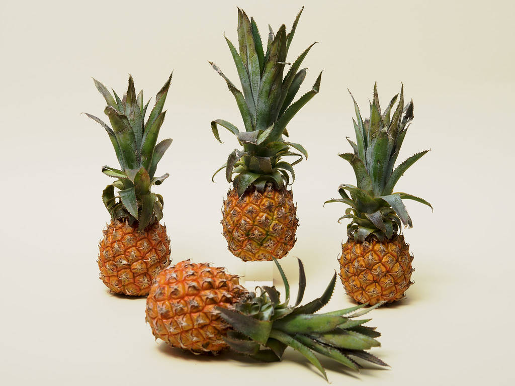 4 Things to Know About Pineapples, Plus New Recipes
