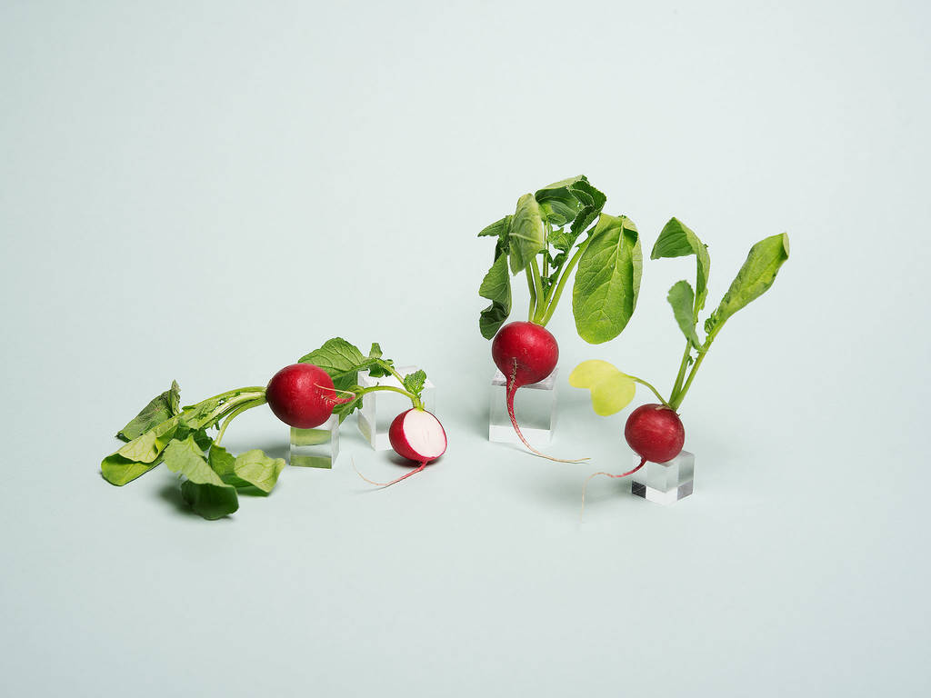 4 Things to Know About Radishes, Plus New Recipes