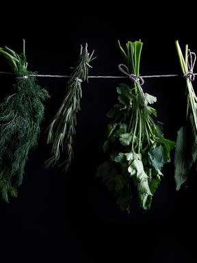 You Can Make Fresh Herbs Last Longer