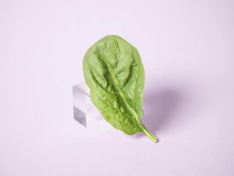 关于菠菜,你应该知道的一切