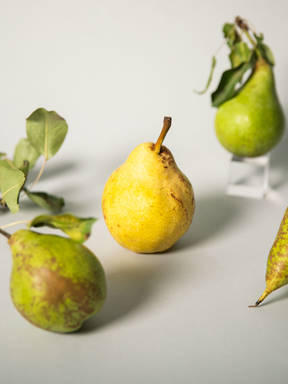 Everything to Know About Cooking and Shopping for In Season Pears
