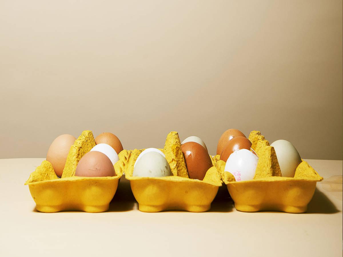 不再浪费,10招解决剩余蛋白和蛋黄