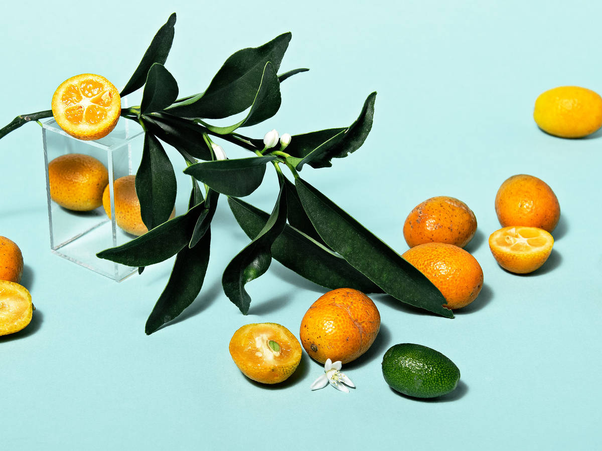 Everything You Need to Know About Cooking and Shopping for In Season Kumquats