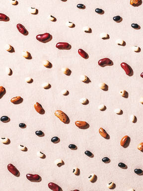 Spilling the Beans: A Guide to Our Favorite Legume