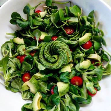 绿色的沙拉